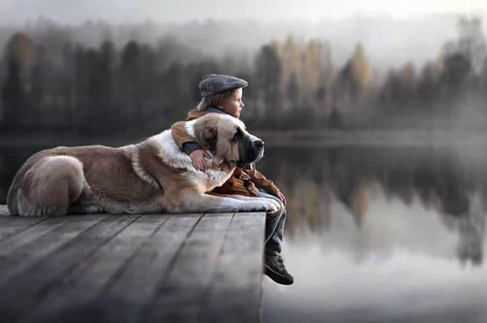 Світлі моменти щирої любові - діти та їхні чотириногі улюбленці
