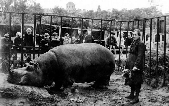 10 шокуючих прикладів виживання в блокадному Ленінграді