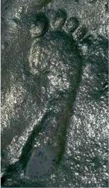 «Незручна» археологічна знахідка: відбиток людської ноги віком 290 мільйонів років