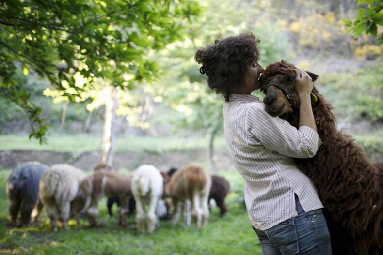 Самі милі тварини 2015-го